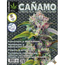 Revista Cáñamo 184