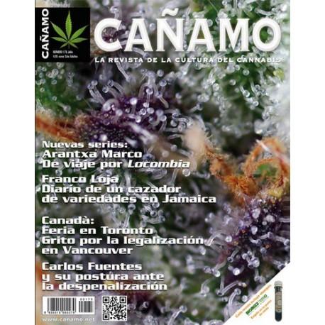 Revista Cáñamo 175