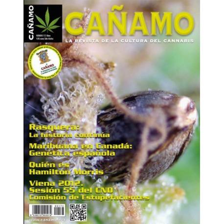 Revista Cáñamo 173