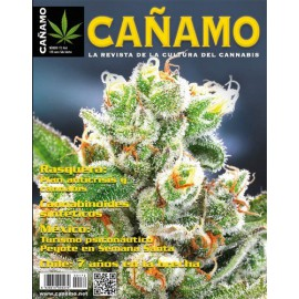Revista Cáñamo 172