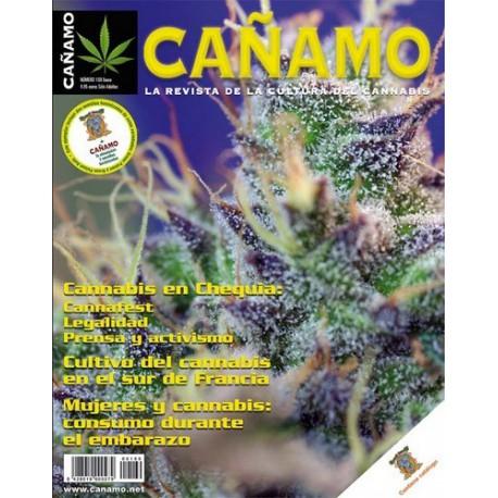 Revista Cáñamo 169