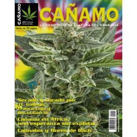 Revista Cáñamo 167