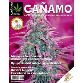 Revista Cáñamo 164