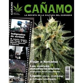 Revista Cáñamo 163