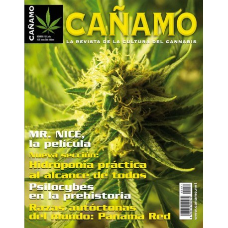 Revista Cáñamo 151