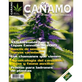 Revista Cáñamo 145