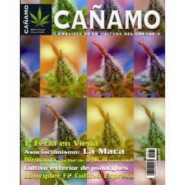 Revista Cáñamo 131