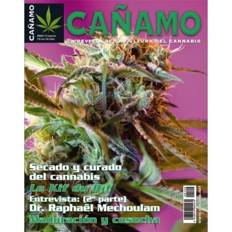Revista Cáñamo 129