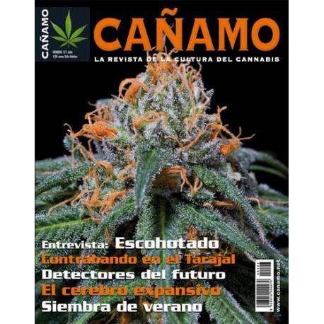 Revista Cáñamo 127