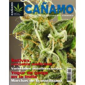 Revista Cáñamo 126