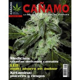 Revista Cáñamo 125