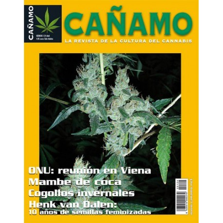 Revista Cáñamo 124