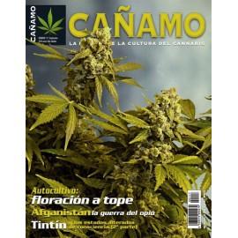 Revista Cáñamo 117