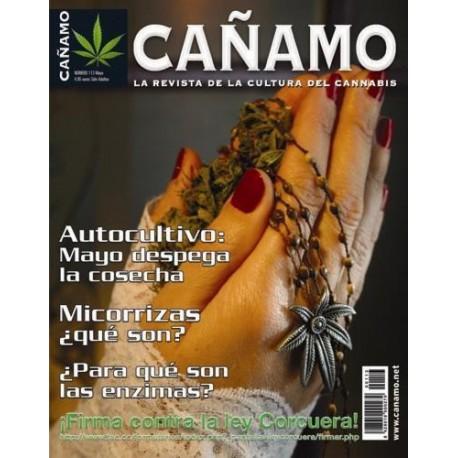 Revista Cáñamo 113