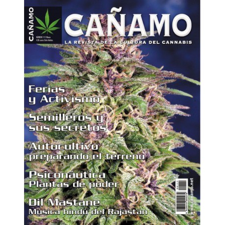 Revista Cáñamo 111