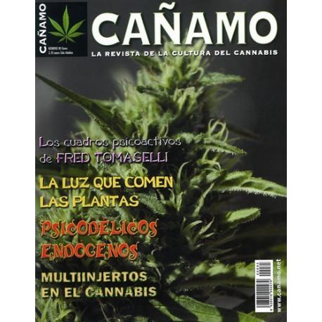 Revista Cáñamo 085