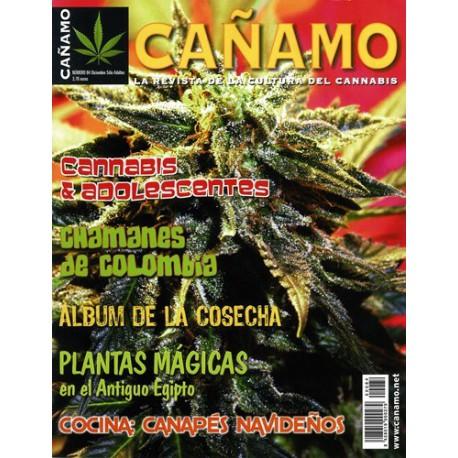 Revista Cáñamo 084