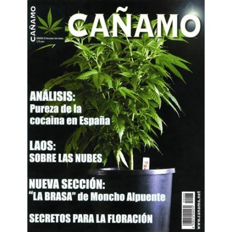 Revista Cáñamo 083