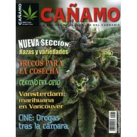Revista Cáñamo 082