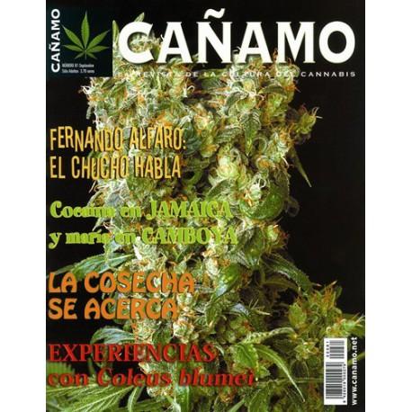 Revista Cáñamo 081