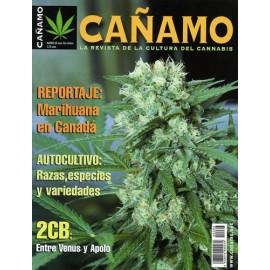Revista Cáñamo 066