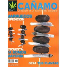 Revista Cáñamo 031