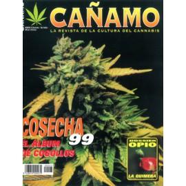 Revista Cáñamo 023