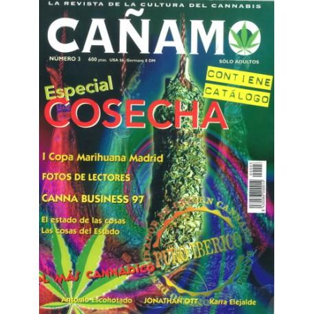 Revista Cáñamo 003