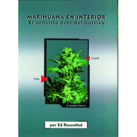 Marihuana en interior