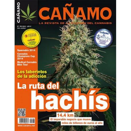 Revista Cáñamo 196
