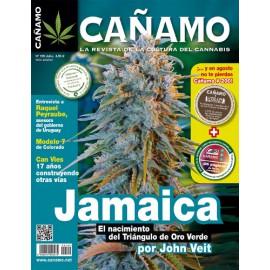 Revista Cáñamo 199