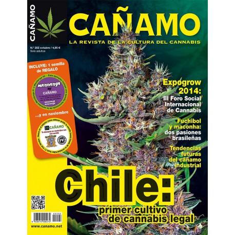 Revista Cáñamo 202