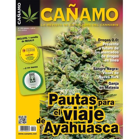 Revista Cáñamo 206